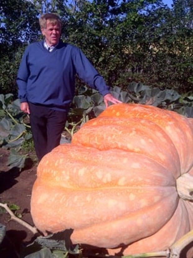 annapolis valley man sets giant pumpkin record nova. Black Bedroom Furniture Sets. Home Design Ideas
