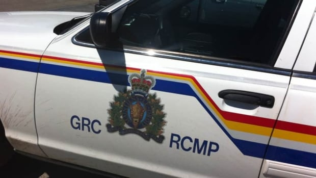 A Winnipeg woman alleges RCMP officers pulled her out of the shower as they executed a search warrant in an unspecified investigation.