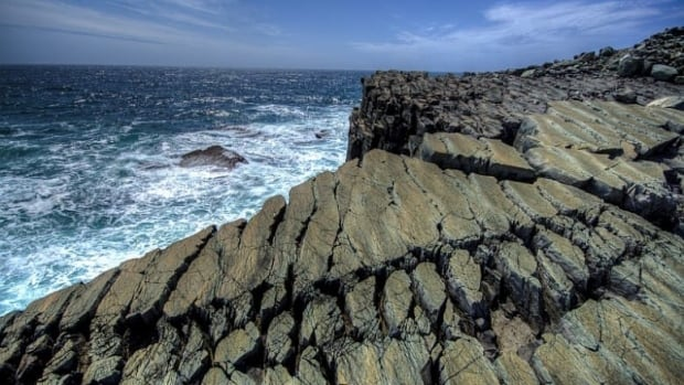 The fossils embedded in rock at Mistaken Point are more than 565 million years old.