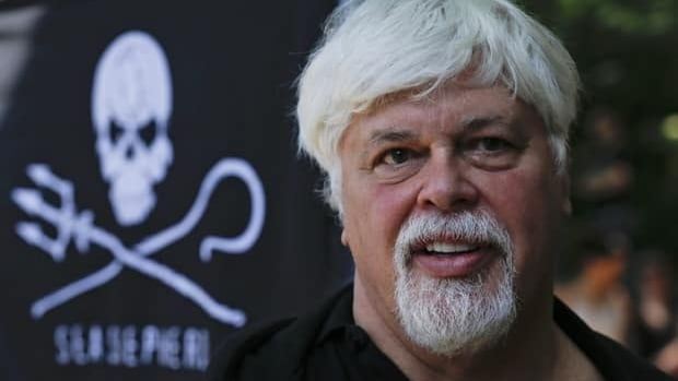 Paul Watson, seen in Berlin on May 23, had been freed on bail after he was arrested in Frankfurt on an international arrest warrant issued by Costa Rica. A German court says he has broken bail and left the country.
