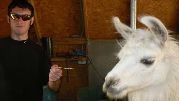 Accused Colorado gunman James Holmes gestures next to a llama in this photograph submitted with his application to graduate school at the University of Illinois, in this image released to Reuters Friday.