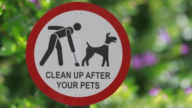 Atul Ranade says a dog whose owner he can't identify has left piles of poop on his property for nearly a month.