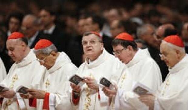 si-cardinals300