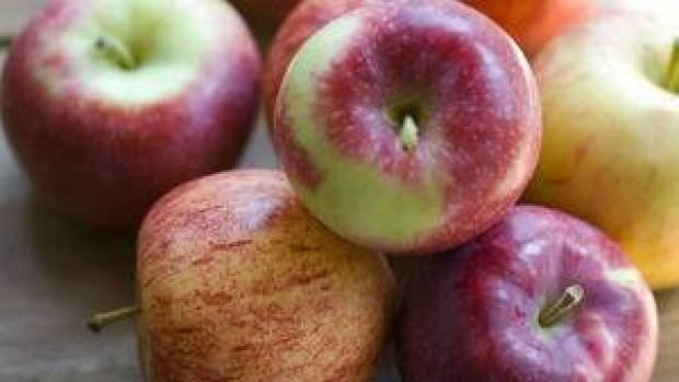 hi-bc-121007-apples-cp-03208955-4col
