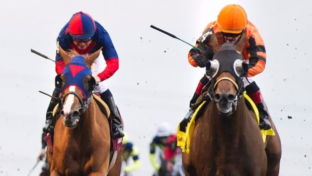 Jockey Justin Stein, right, and horse Strait of Dover cross the finish line to win the running of the 153rd Queen's Plate at Woodbine Racetrack in Toronto on Sunday.