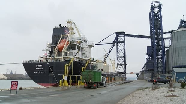 Business has increased by 35 per cent at Hamilton's port since 2008. This ship is being loaded at Richardson International's port.