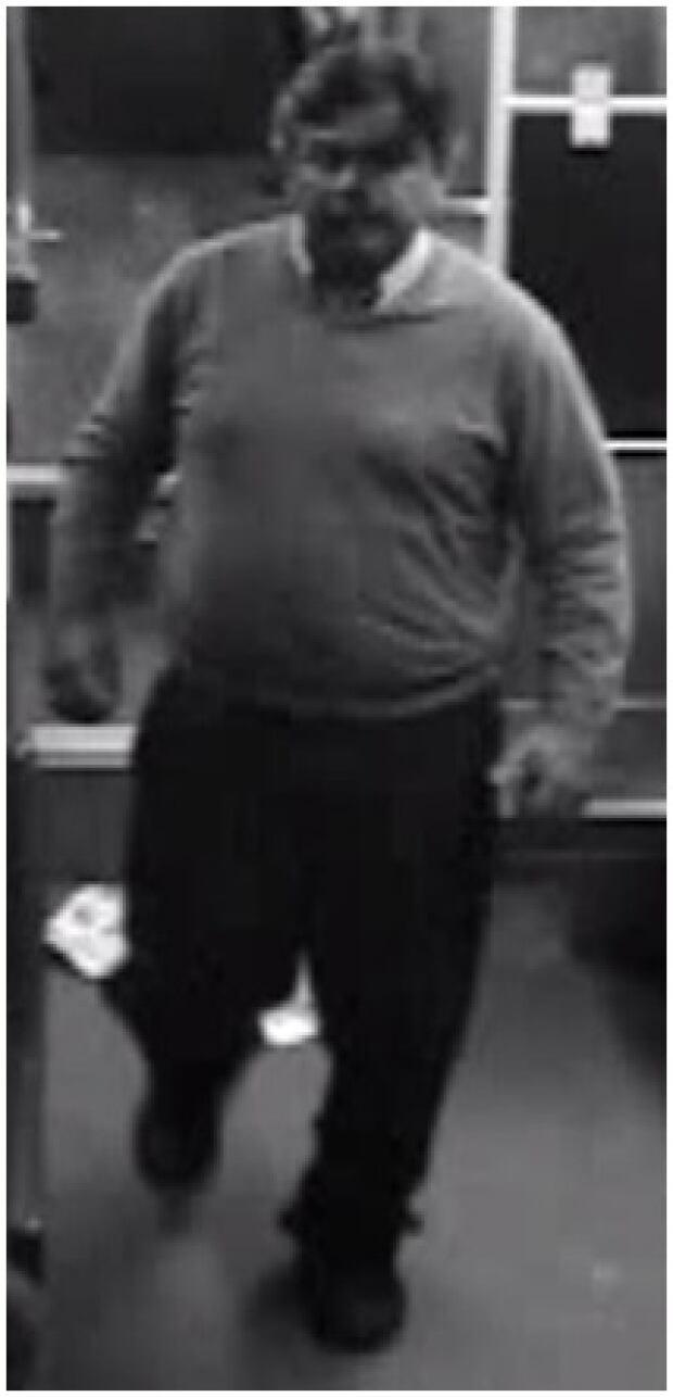 TTC bus sex assault suspect