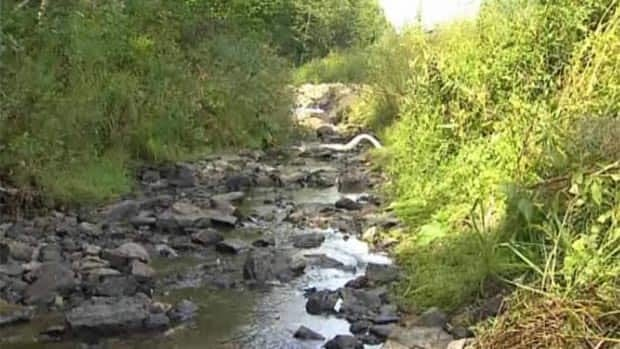Residents are concerned about the safety of a stream in Woodstock after a diesel spill on Aug. 3.