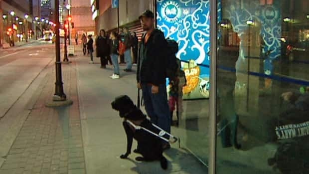 Troy Nauffts waits for a Metro Transit bus with his guide dog.