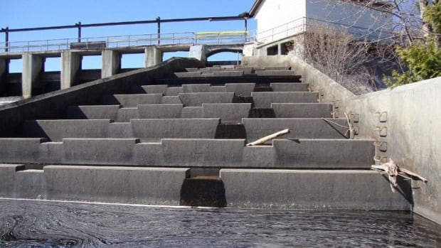 In a lawsuit filed on behalf of Robert Whiteside and the Current River Hydro Partnership, the plaintiffs are asking for an injunction that requires the City of Thunder Bay to cease operation of the fish ladder at the Boulevard Lake Dam.