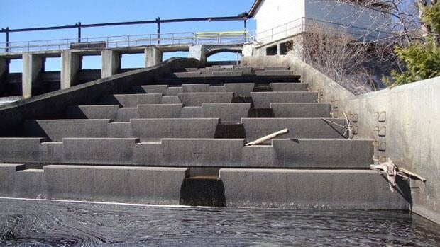 More water could soon be flowing along the fish ladder at the Current River dam. A fish ladder is a man made way of getting fish around dams. It looks like a big set of stairs and contains pools of water in which fish jump up to get upstream.