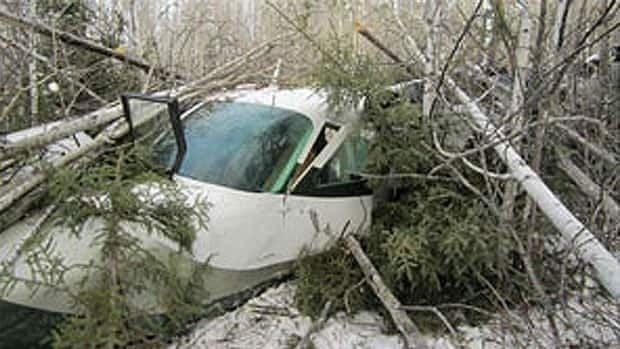 The plane crashed in a densely wooded area about two kilometres from the airport in Snow Lake, 700 kilometres north of Winnipeg, on Sunday.