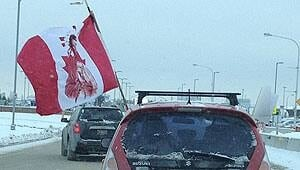 mi-rally-flag