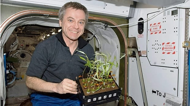 Canadian astronaut Bob Thirsk holds plants while on board the International Space Station in 2009.