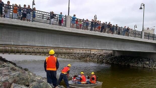 The Ferry Street Bridge officially opened Saturday.