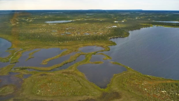 An aerial view shows the landscape typical of the Hudson Bay Lowlands in Ontario. A new study of lake sediment core samples by Queen's University researchers shows the area has warmed rapidly in the last 15 years.