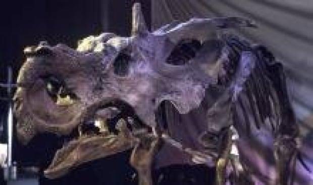 si-dinosaur-river-of-death