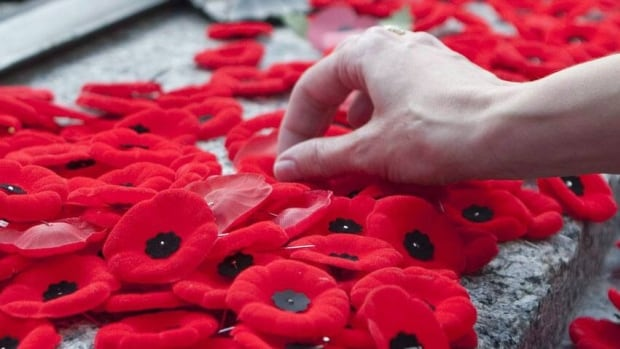 The Royal Canadian Legion has sold about 19 million poppies so far this year, about a million more than in 2013.