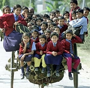 india-cart-300-rtrq4q81