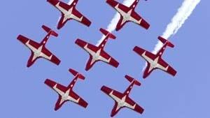 mi-snowbirds-dnd-file