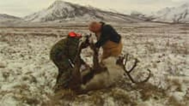 si-dempster-caribou-hunt-220-2009