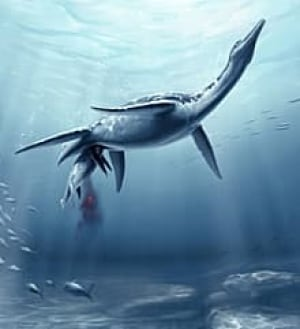 sm-220-plesiosaur-giving-birth-okeefe1hr