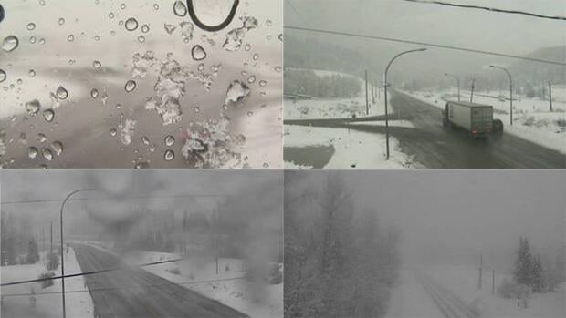 Clockwise from top left: DriveBC web camera snapshots from outside Cranbrook, Sparwood, Morrissey, and Hosmer on Saturday.