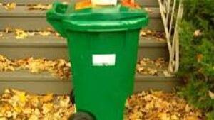 si-cgy-ott-green-bin220