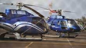 2 Ontario Tourists Reported Dead In Hawaii Helicopter Crash  World  CBC News