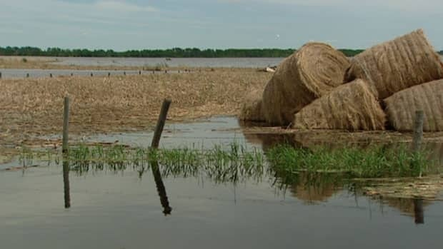 wet-fields-stmartin