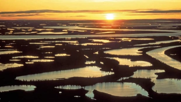 Reindeer-grazing reserves near the communities of Inuvik and Tuktoyaktuk in the Mackenzie Delta could be open to bidding by companies who want to explore for oil and gas.