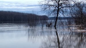 li-nb-river-flood-water-620