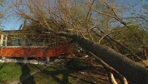mi-storm-damage-laurent9