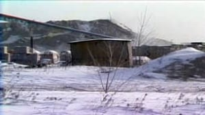 tp-mb-derksen-shed-85