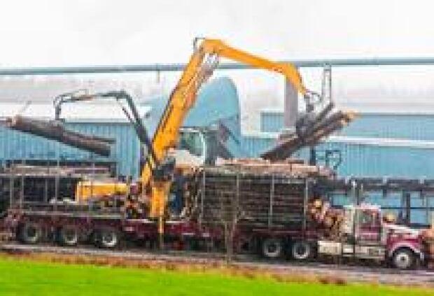 sm-220-logging-truck-00650545
