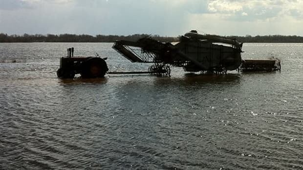 A flooded field near Melita, Man.