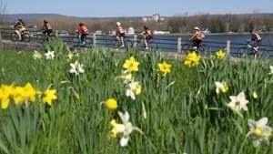 si-ottawa-bikedays-300-cp-00630064
