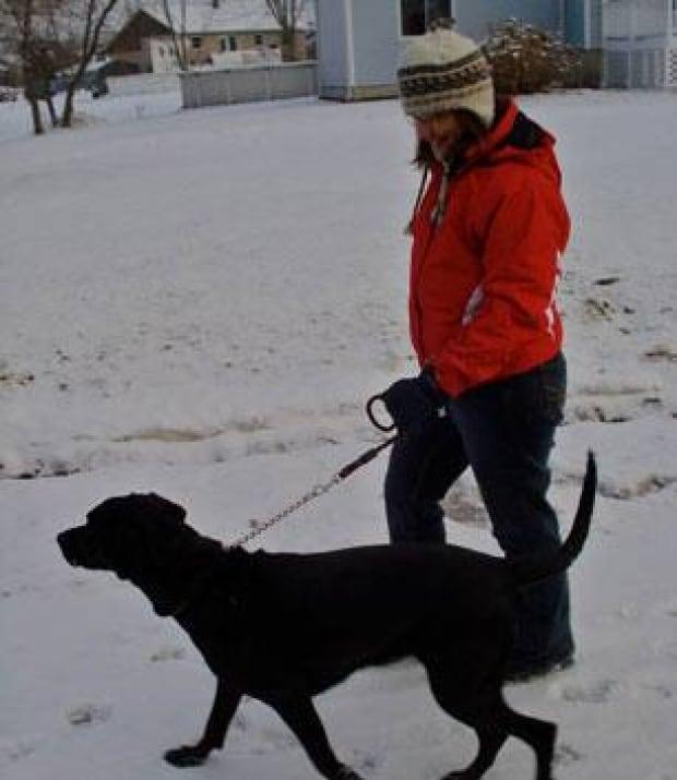 in-dog-walk