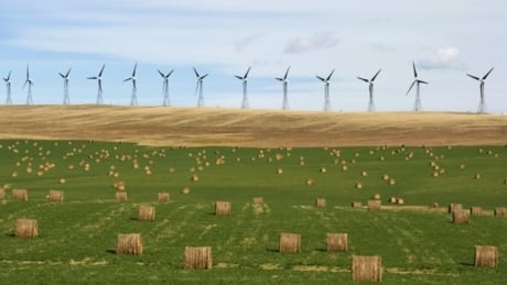 si-alberta-wind-farm-8col
