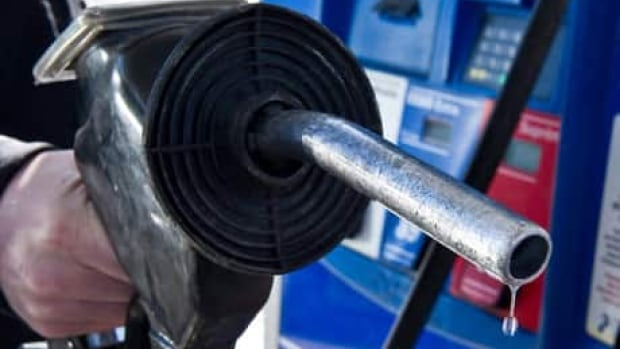 Canadians can expect to save about $1,500 at the gas pump this year because of lower oil prices, BMO says.