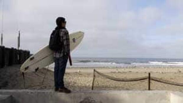 mi-surfer-300-00313838