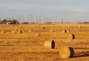 sm-220-saskatchewan-wheat-farm-9809679