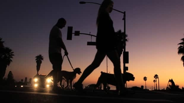 A couple walk their dogs past a malfunctioning traffic intersection in Cardiff, Calif., following a sweeping power outage that knocked out power in parts of the U.S. southwest and Mexico.