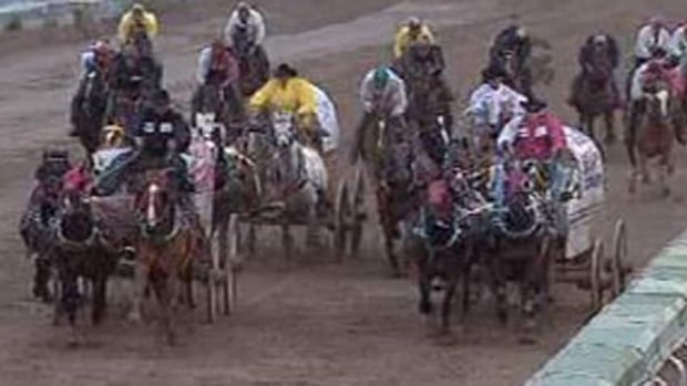 Chuckwagons Rodeo Getting New Rules Stampede Cbc News