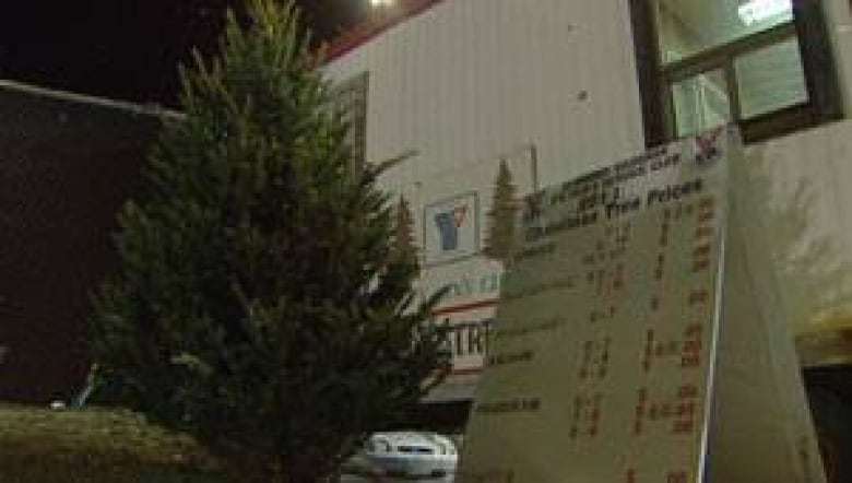Charities lose Christmas tree sales to big stores