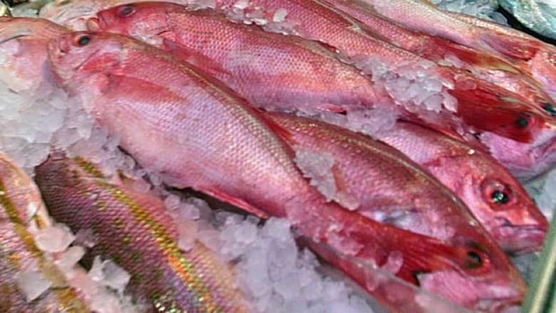 l1-620-fish-mercury-cp-3335