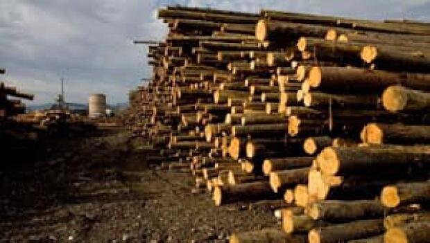 mi-bc-110810-lumber-cp-3885299