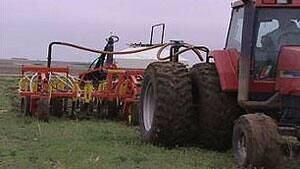 mi-seeding