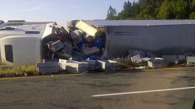 A tractor trailer carrying a load of lobsters tipped over on Highway 1 west of Saint John on Friday. (Submitted by Jackie Thomas)
