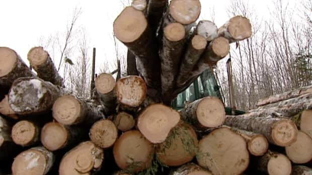 Nova Scotia will spend $5 million to help the province's forestry industry adapt to a 50 per cent reduction in clearcutting over the next five years.